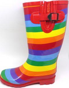 Rainbow Gumboot